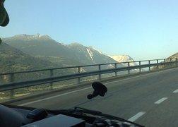 4. Transport wyposażenia łazienek do Szwajcarii - powrót do domu